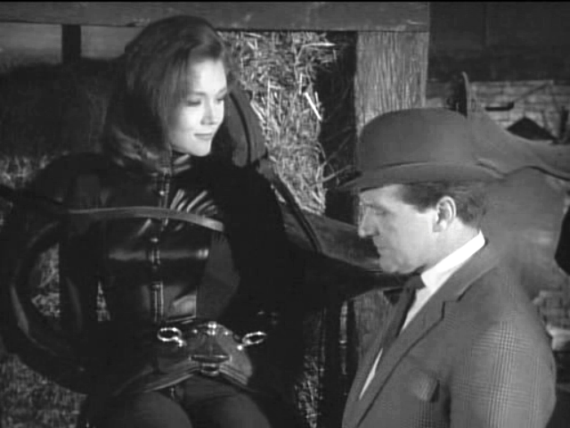 Mrs Peel Leather
